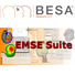 BESA and EMSE icon